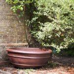 Azalea Bowl Rustic