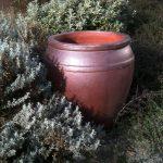 Jar Rustic
